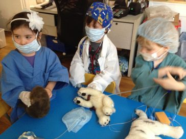 Veterinarians in Training